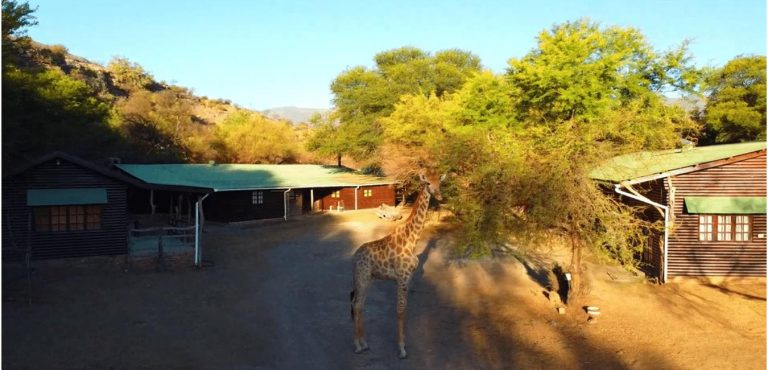 Bontebok Lodge - Hoeksfontein Safaris - Pearston, Eastern Cape, South Africa